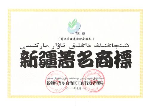 新疆银穗财税服务集团股份有限公司