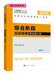 """综合阶段-2019注会综合阶段""""梦想成真""""系列应试指南(基础强化卷)"""