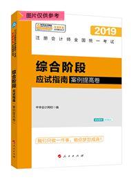 """综合阶段-2019注会综合阶段""""梦想成真""""系列应试指南(案例提高卷)"""