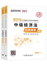"""2019年中级会计职称《经济法》""""梦想成真""""系列丛书经典题解(上下册)"""