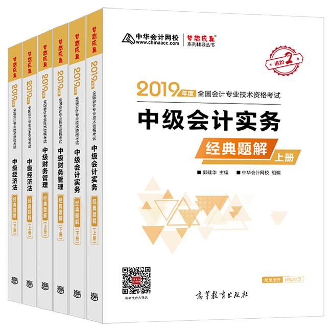 """2019年中级会计职称三科""""梦想成真""""系列丛书经典题解"""
