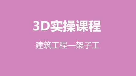 3D实操课程-建筑工程—架子工(原价480元,优惠价240元)