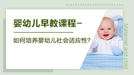 婴幼儿早教系列课程-如何培养婴幼儿社会适应性?