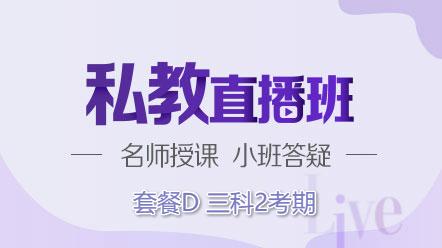 联报课程2020-[私教直播班]套餐D