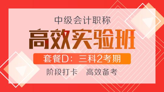 中级联报课程2020-[高效实验班]套餐D