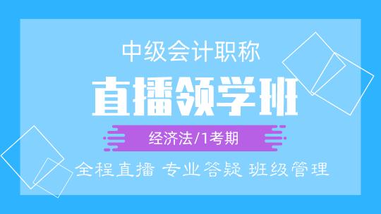 经济法(中级)2020-直播领学班(4月开课)